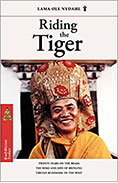 Riding the Tiger book